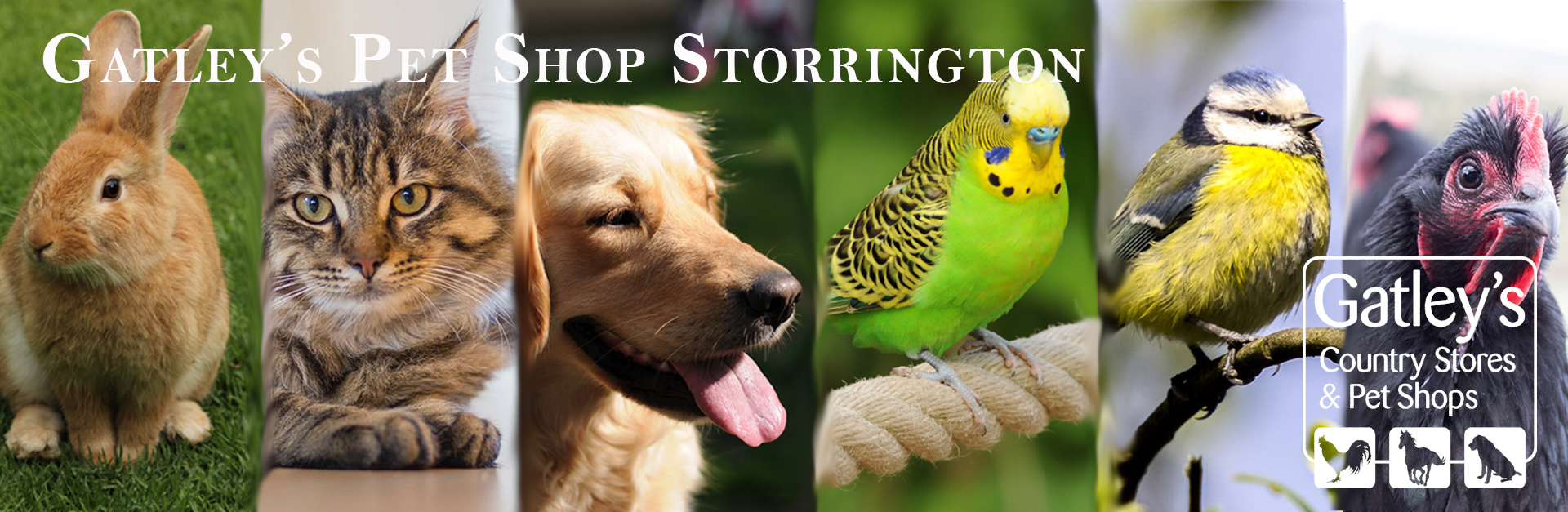 Gatleys pet shop storrington